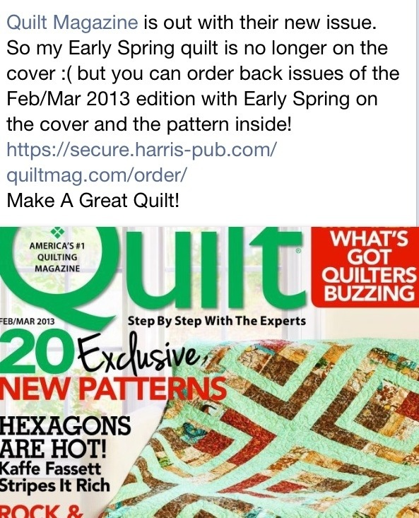 20130219 081522 Back Issues of Quilt It Today